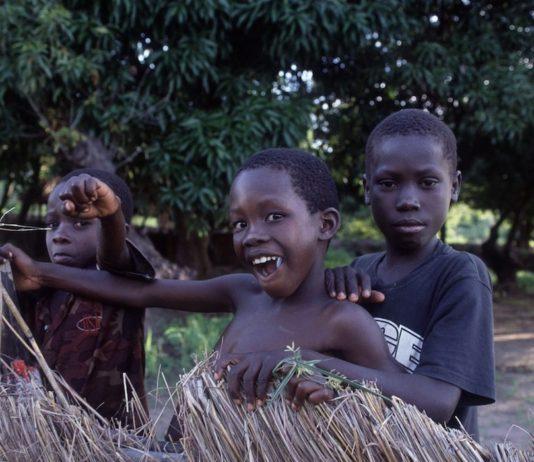 Mozambique Cobue