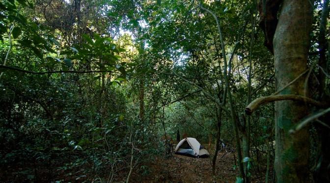 Kamperen in de jungle