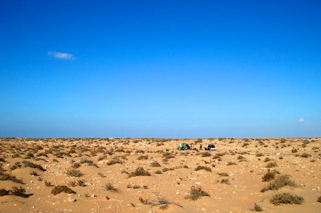 Wildkamperen in de Sahara