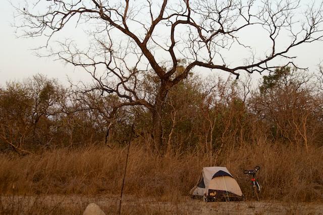 Camperen met termieten.