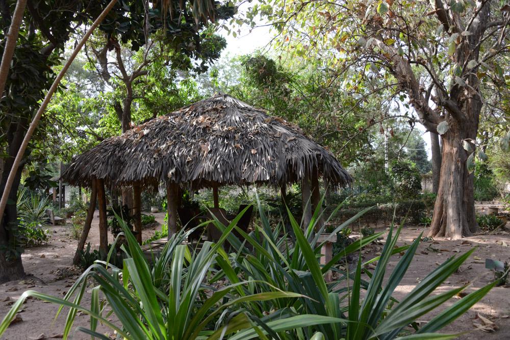 Botanische tuin Bakau Gambia