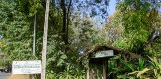 Botanische tuin in Bakau