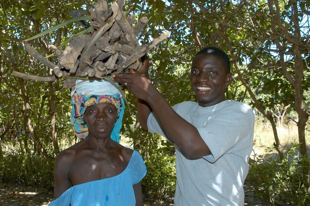 Brandhout verzamelen Gunjur GambiaBrandhout verzamelen Gunjur Gambia