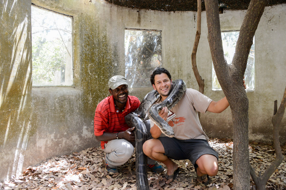 Reptielen farm Gunjur Gambia