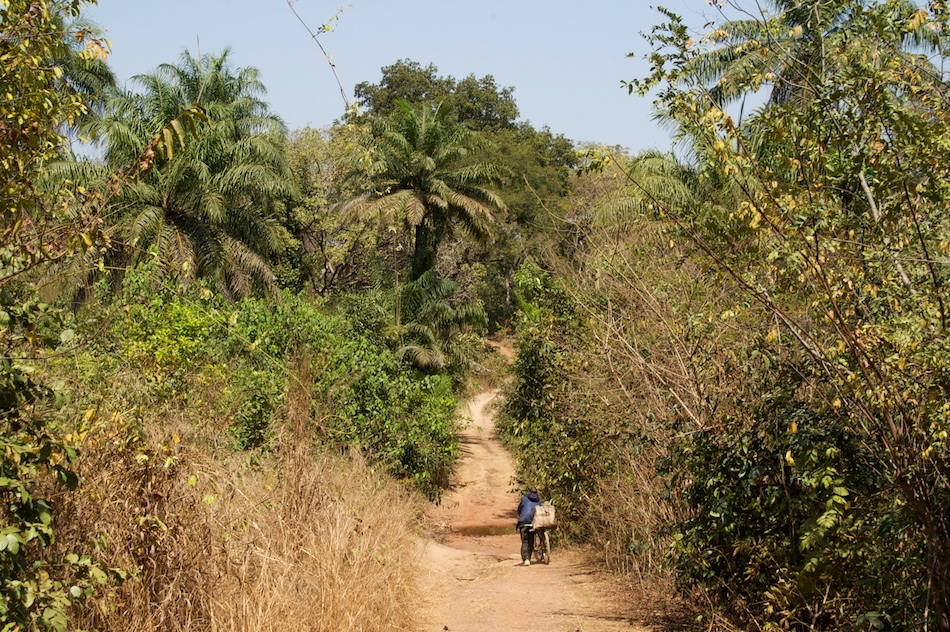 Boé Ché Ché Guinee Bissau