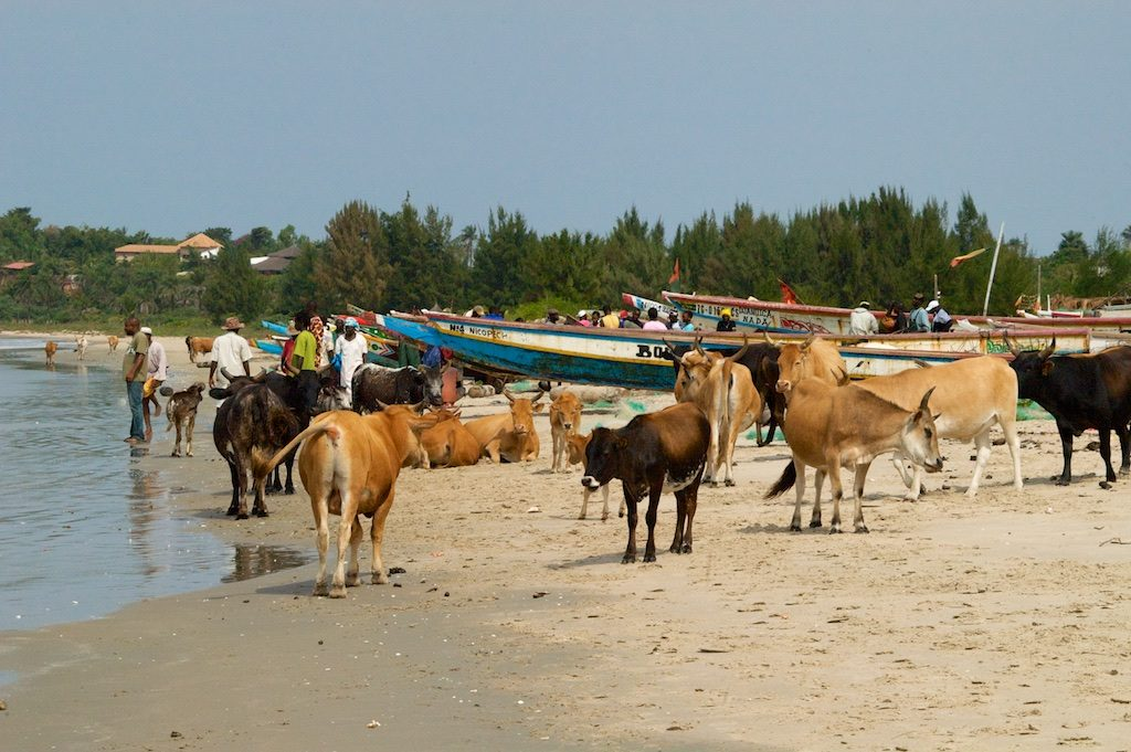 Cap Skirring Casamance Senegal