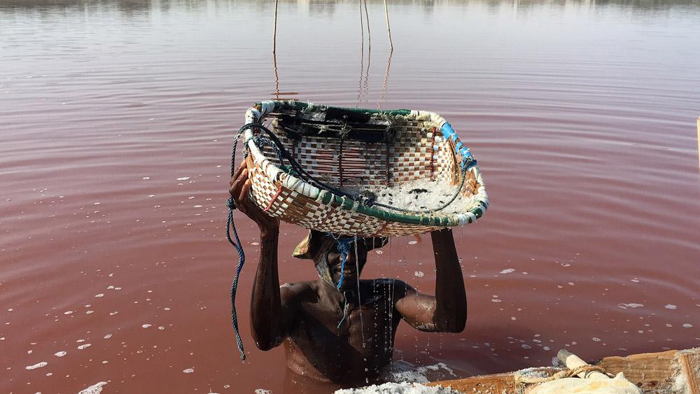 Lac Rose Senegal