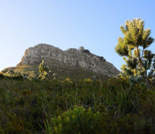 Lion's Head Rock Kaapstad