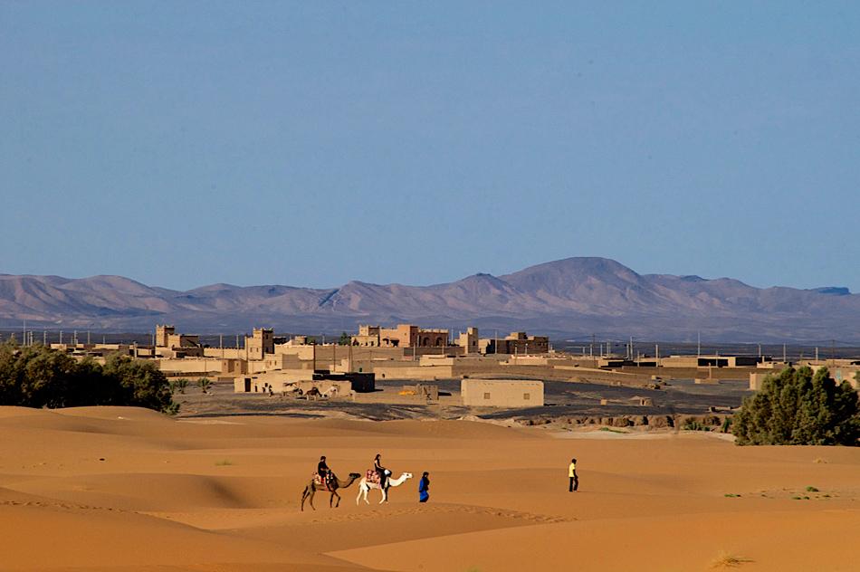 Dromedaris tocht Merzouga Marokko