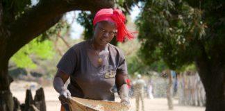Niafarang Senegal