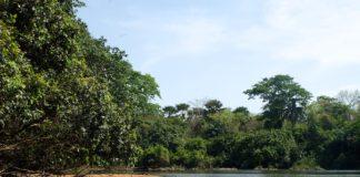 Outamba-Kilimi Sierra Leone