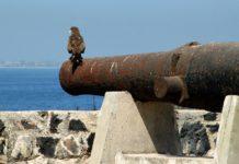 Fort d'Estrées op Ile de Gorée.