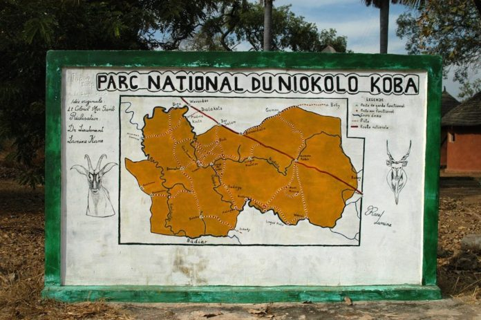 niokolo koba nationaal park Senegal
