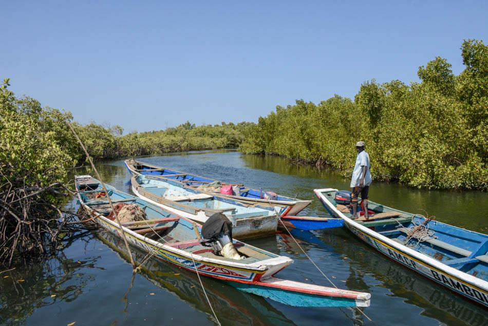 Boottocht Sine Saloum Delta Senegal