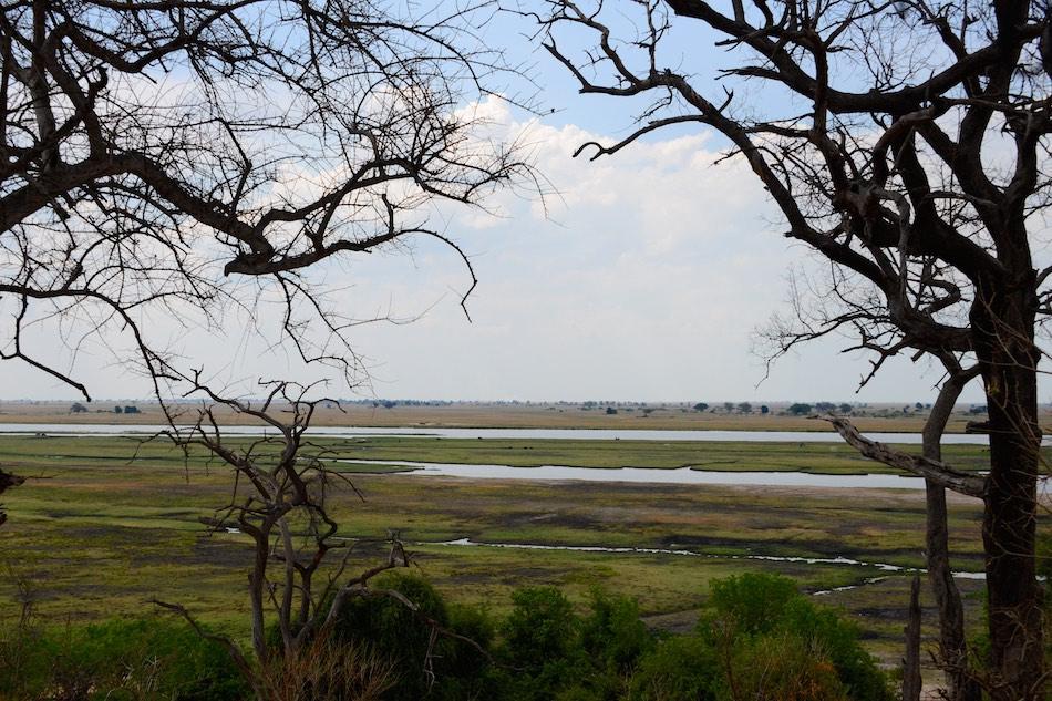 Chobe rivier Botswana