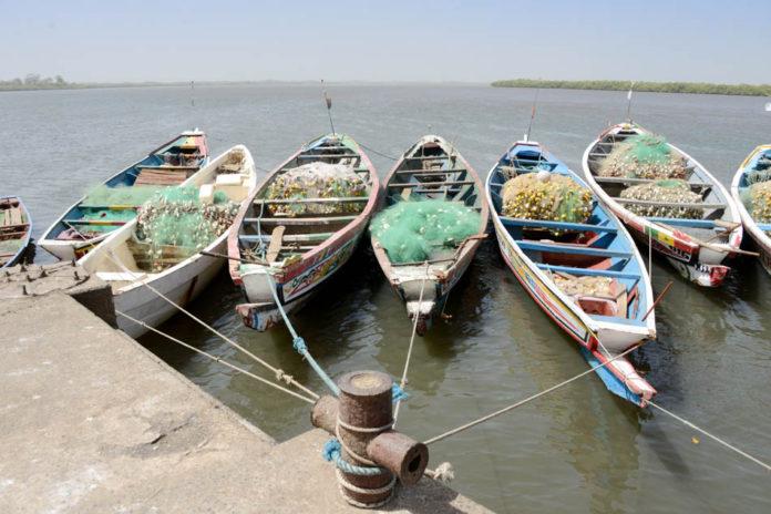 Missirah Sine Saloum Delta Senegal
