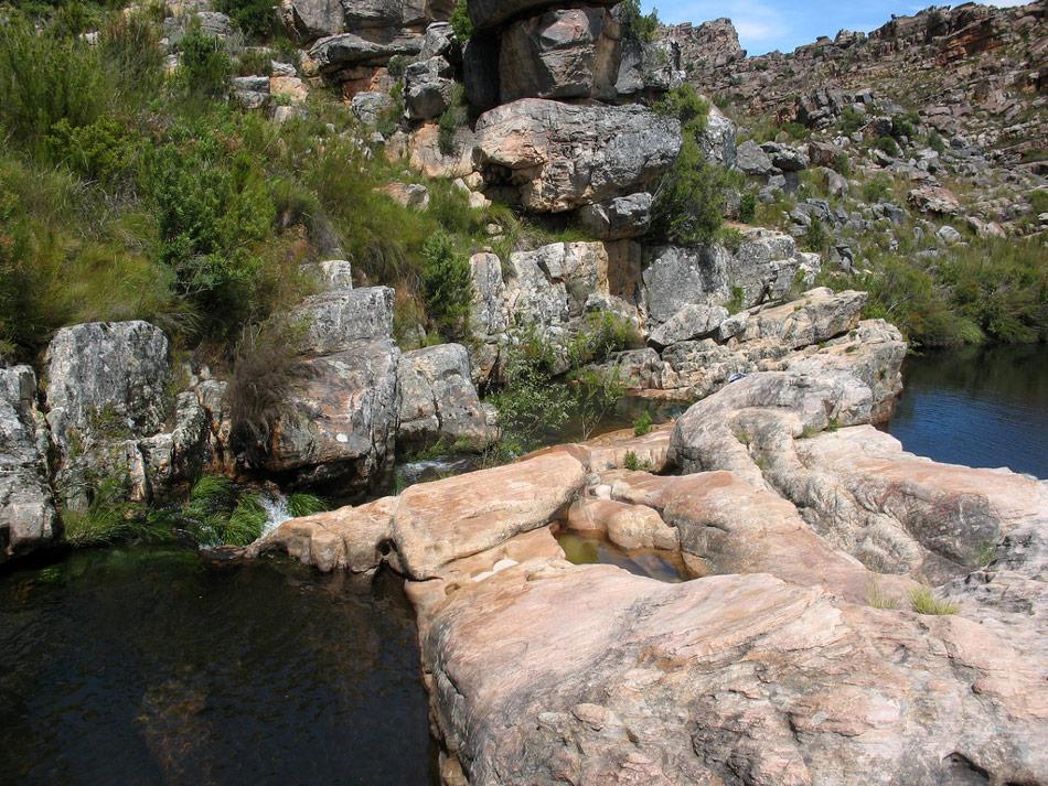 Cederbergen Zuid Afrika