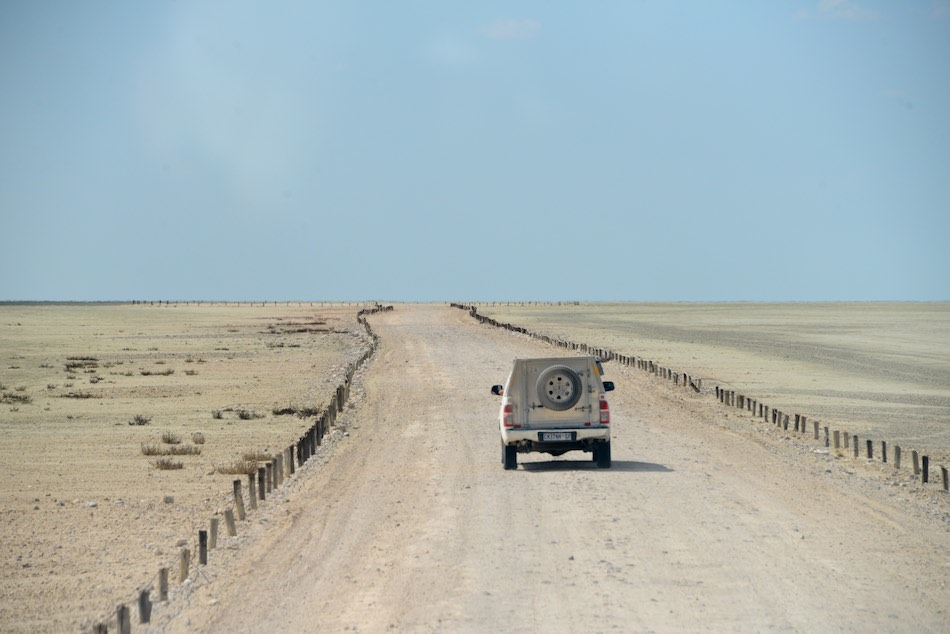 Etosha Namibië stunningtravel wegen