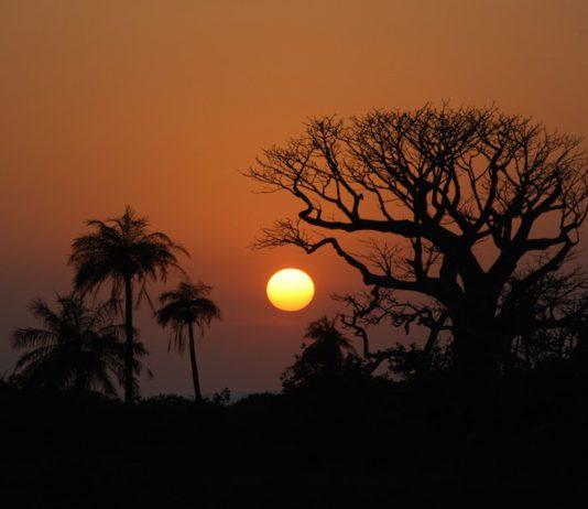Duinen Niafrang Casamance Senegal