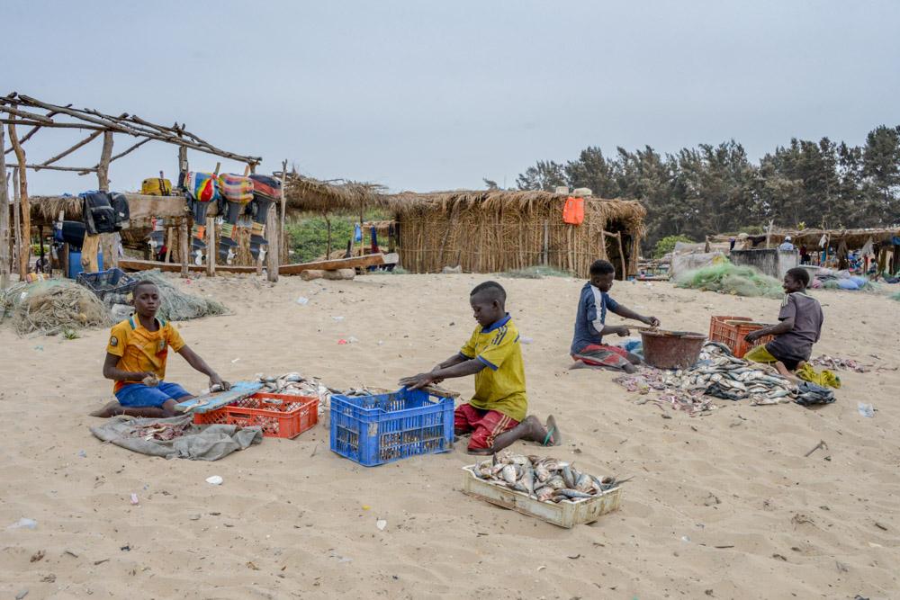 vismarkt Abene-Casamance-Senegal