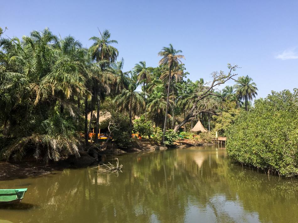 Bintang Bolong Abcas Gambia