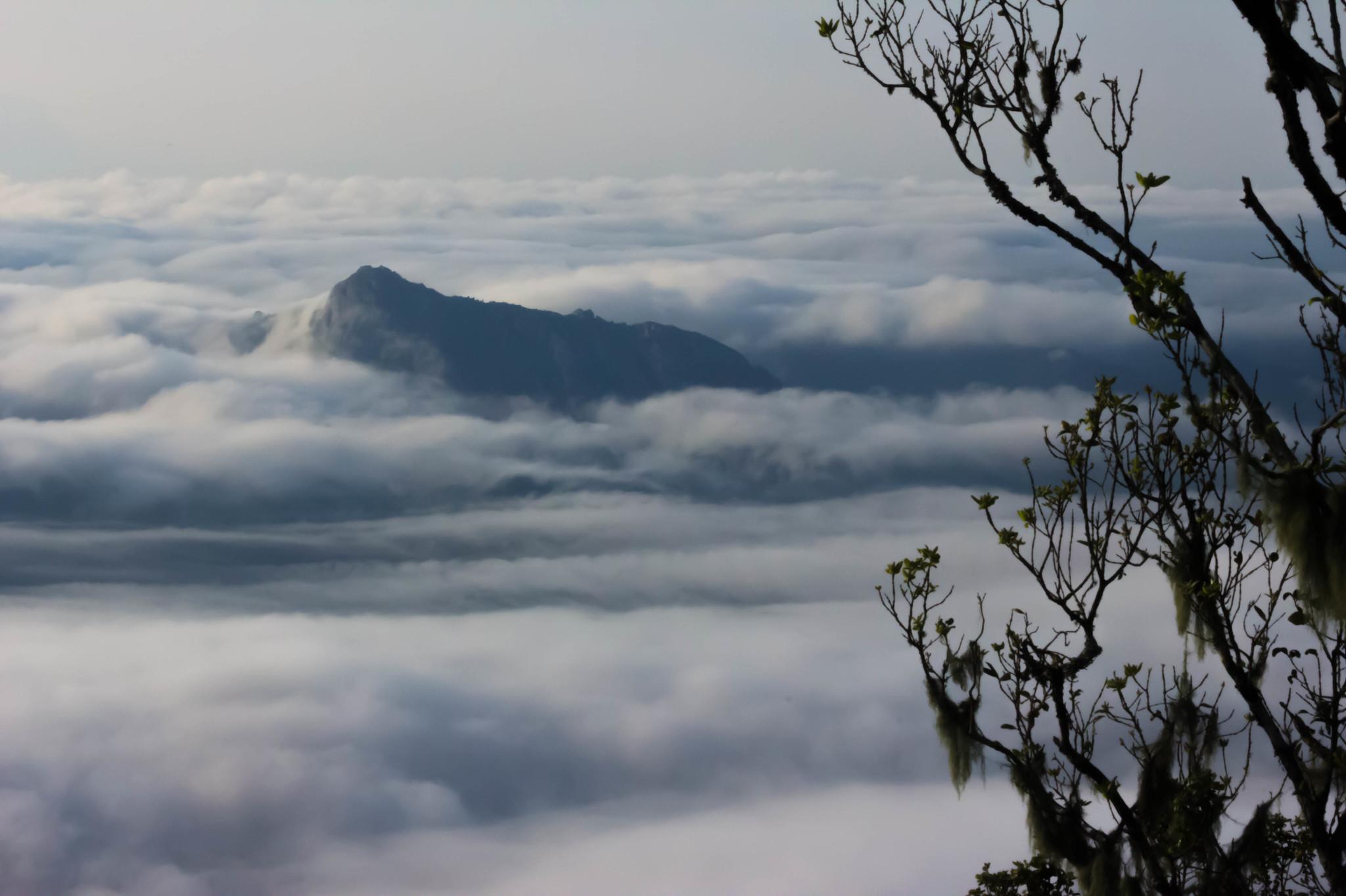 Uitzicht Zomba Plateau Malawi