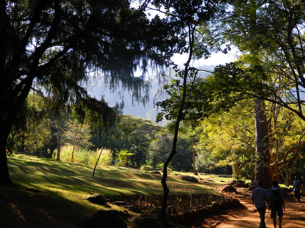 Wandelen op het Zomba Plateau