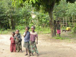Wereldrecord bomen planten in Ethiopië
