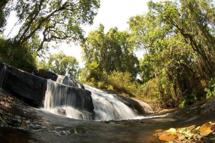 Zomba plateau Malawi