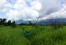 Mont Nimba Guinee