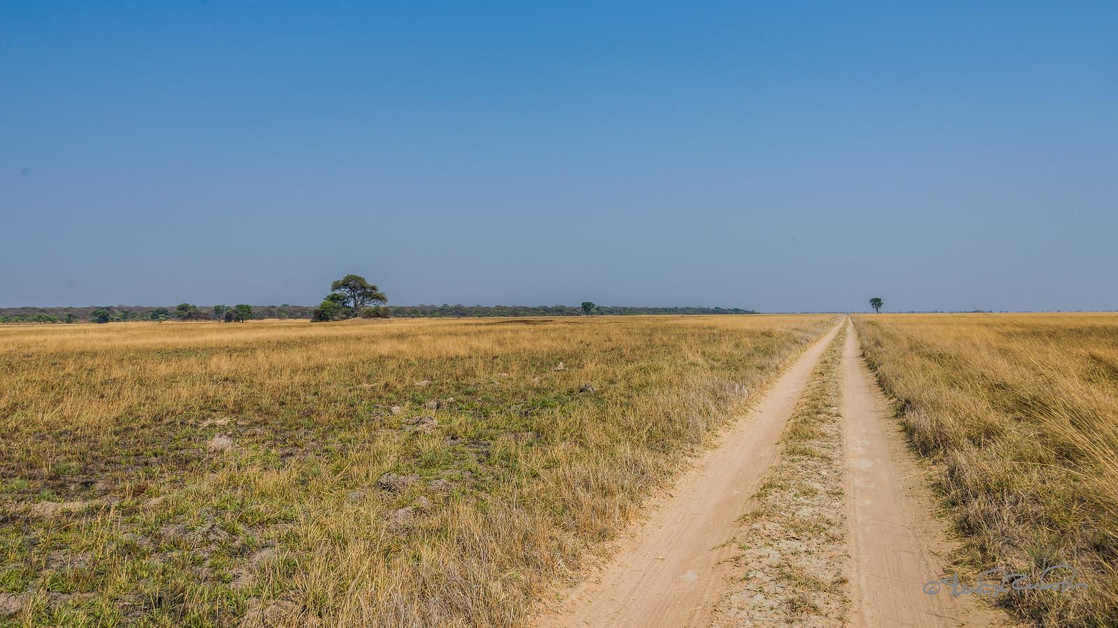 Weg Kafue Zambia