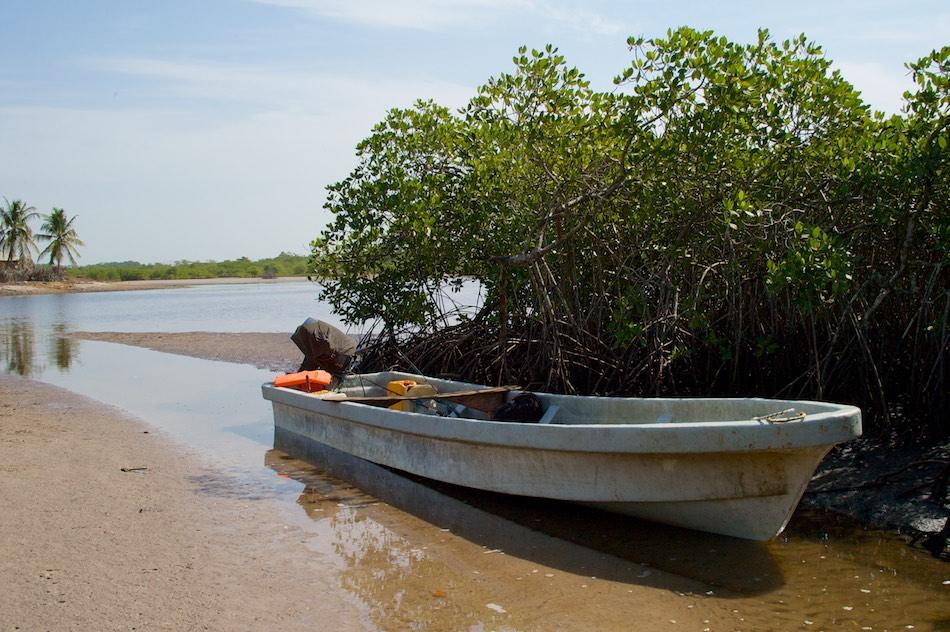Bao Bolong Wetland reserve per boot