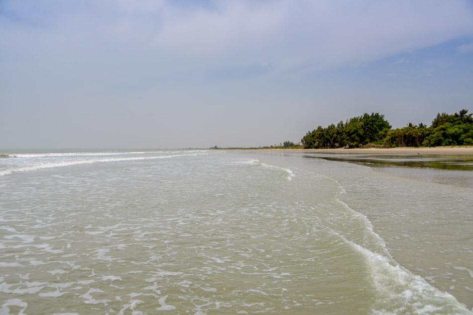 Strand Niumi national park Gambia