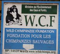 Moyen-Bafing WCF