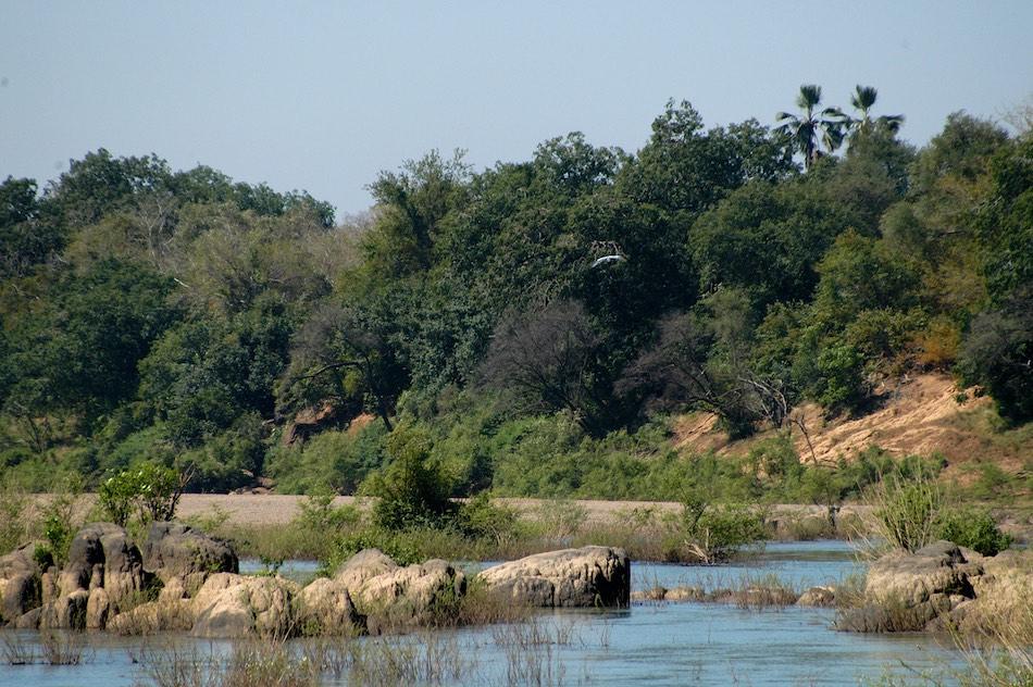 Parc National du Badiar Guinee