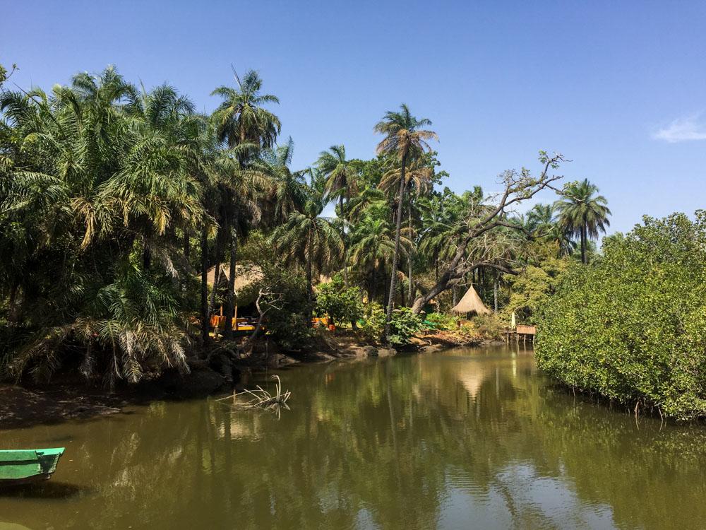 Bintang Bolong Gambia Abcas Creek