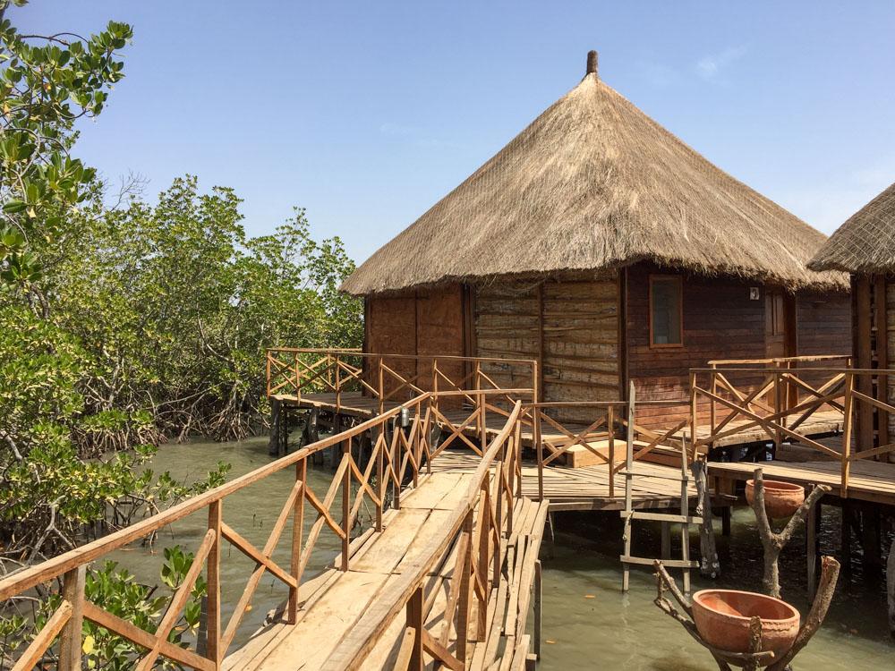 Bintang Bolong mangrove