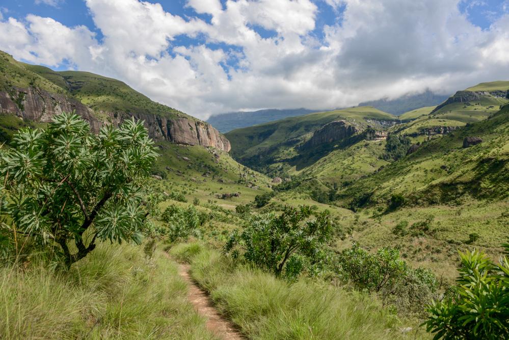 Dragensbergen Zuid Afrika-1