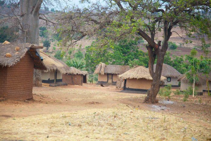 Namizimu Forest Reserve Malawi