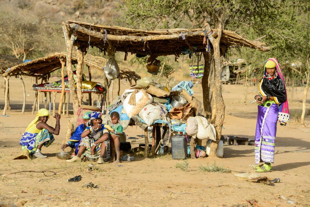 Fulani Bororo Tsjaad Mongo