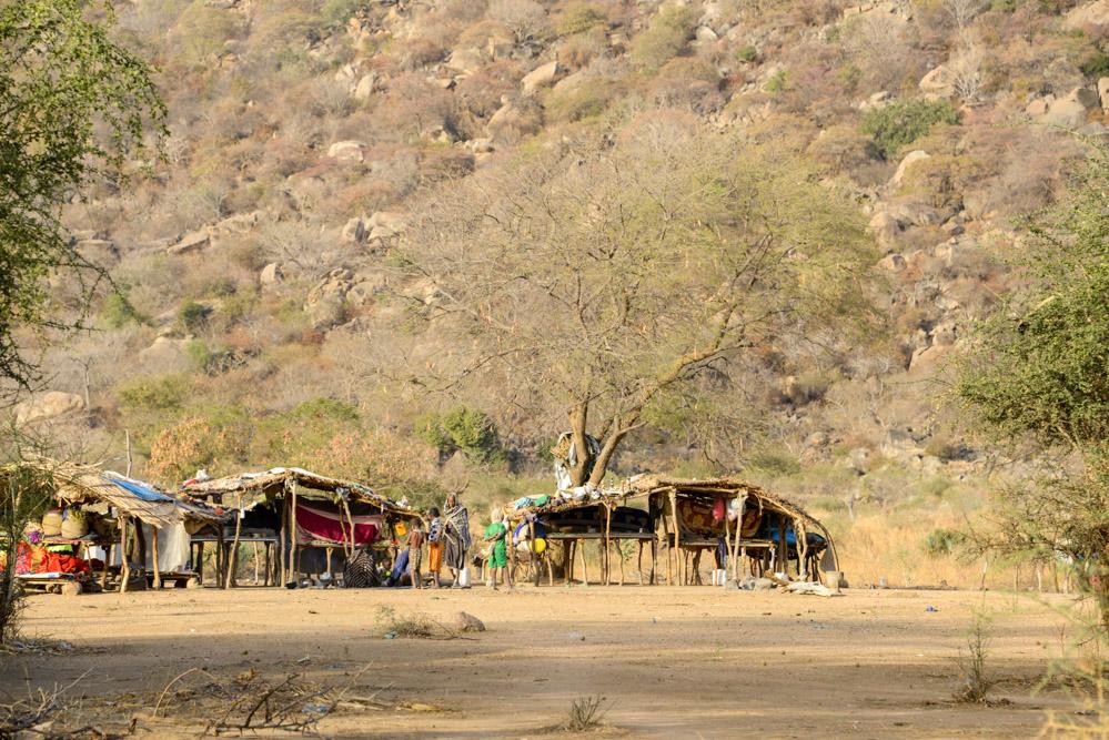 Fulani Bororo Tsjaad dorp
