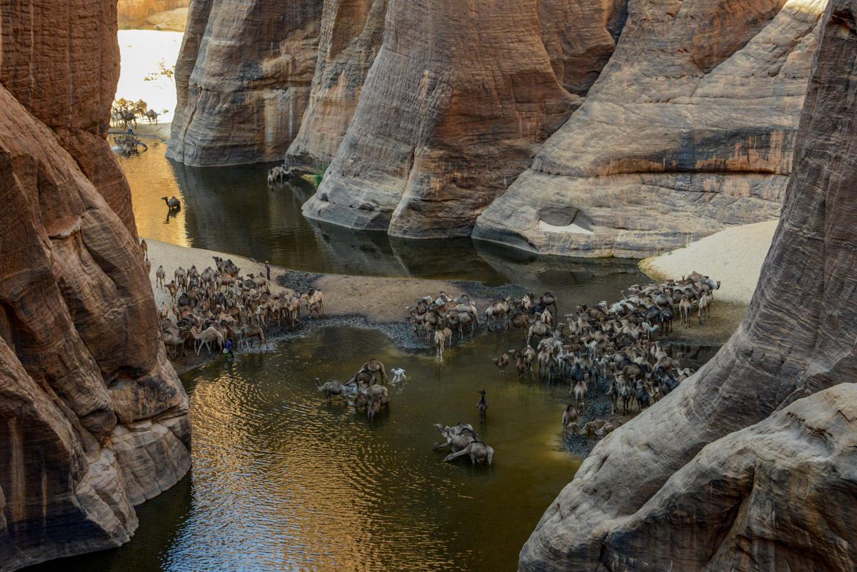 Guelta d'Archei Ennedi kloof