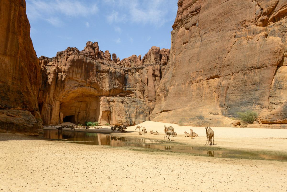 Guelta d'Archei Ennedi