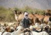 Nomaden Tsjaad herder