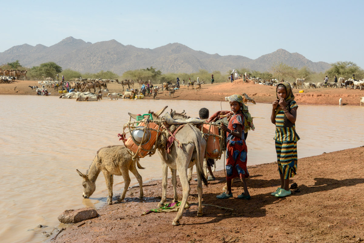 Nomaden Tsjaad kinderen