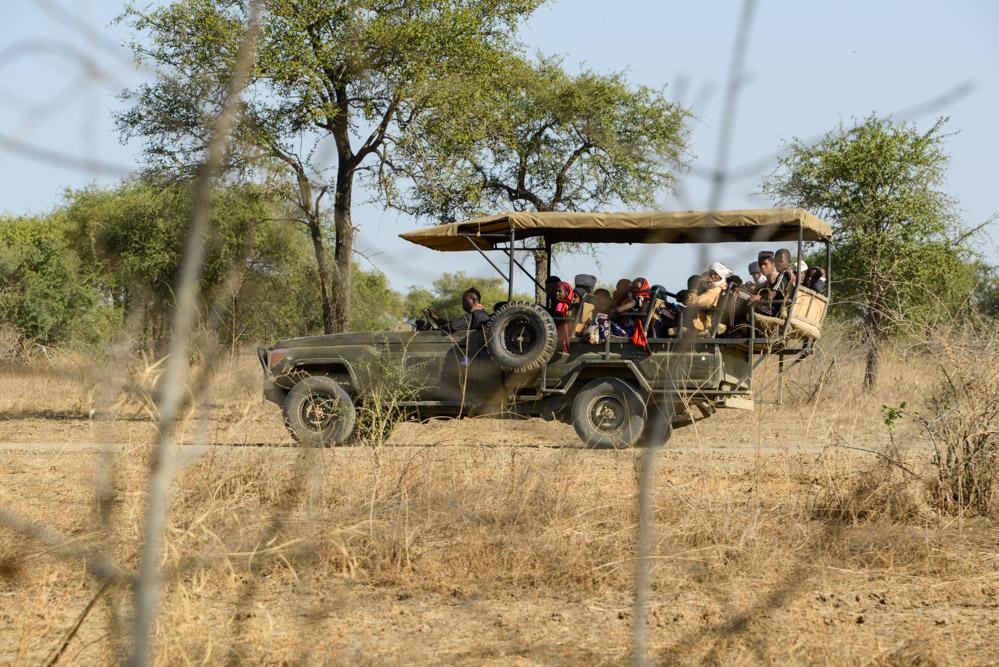 Zakouma Tsjaad safari