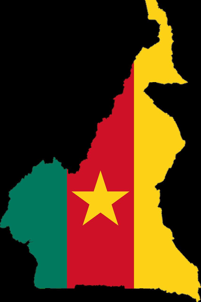 kameroen vlag