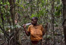 Dja Kameroen Pygmee