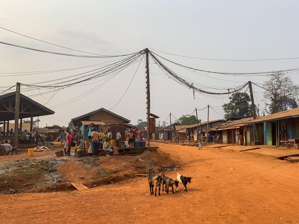 Libongo, Kameroen