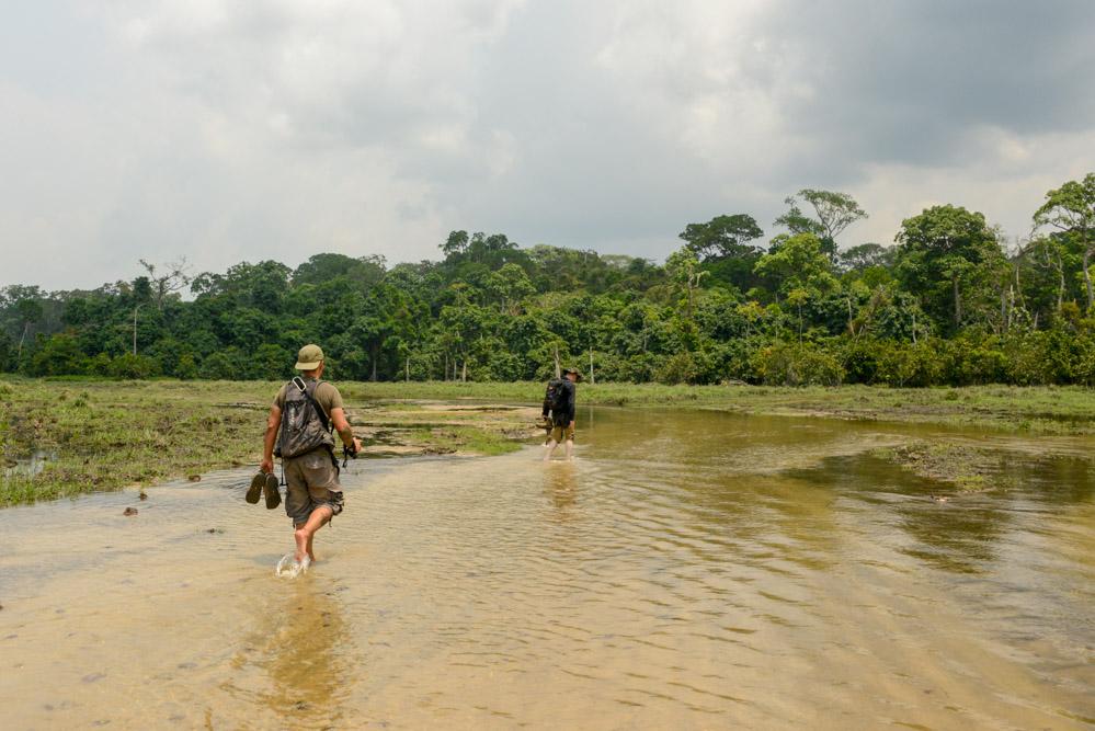 Saline Centraal Afrikaanse Republiek